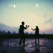 Download Brazil We Flexing MP3