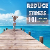 Reduce Stress - 101 Relaxation Songs, Deep Sleep Music to Improve Your Mood & Relax Level