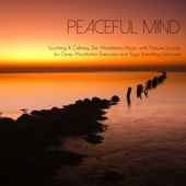 Breathe In & Breathe Out - Peaceful Music Orchestra