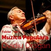 Muzica Populara - Folclor, Vol. 1