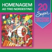 20 Super Sucessos: Homenagem ao Trio Nordestino