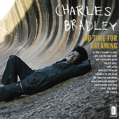Charles Bradley & Menahan Street Band - No Time for Dreaming  artwork
