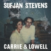 Death with Dignity - Sufjan Stevens