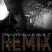Laisse brûler (feat. Capleton & Admiral T) [Remix] - Single