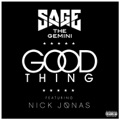 Sage the Gemini Now and Later