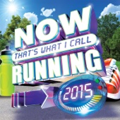 Various Artists - Now That's What I Call Running 2015 artwork