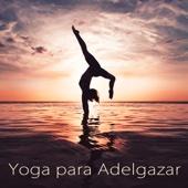 Yoga para Adelgazar – Lounge y Música Zen para Clases de Yoga, Ashtanga, Power Yoga y Pilates