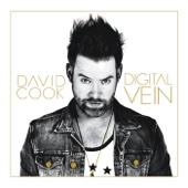 Digital Vein cover art