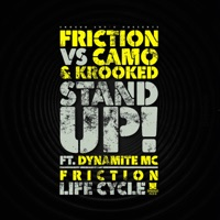 FRICTION - Life Cycle