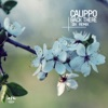 Back There (EDX Remixes) - Single, Calippo