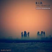 RIB - Eyes of Heavenly Color artwork