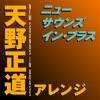 New Sounds In Brass Masamichi Amano Arranged, Tokyo Kosei Wind Orchestra