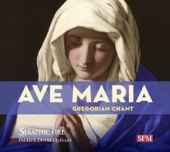 Ave maris stella (Iberian plainchant) [arr. P.D. Quigley for choir]