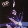 I Would Like to See You Again, Johnny Cash