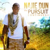 The Pursuit Continues - Najie Dun