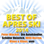Best of Après Ski 2014