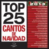 Top 25 Cantos de Navidad (Edición 2013)