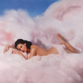 Download Lagu MP3 Katy Perry - Teenage Dream