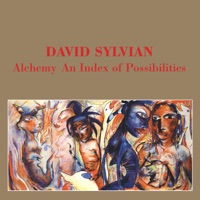 Alchemy - An Index of Possibilities (Remastered) - David Sylvian MP3