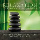 Thai Massage (Beauty & Positive Vibrations of Thai Massage)