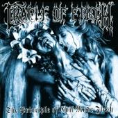 The Principle of Evil Made Flesh cover art
