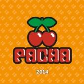 Pacha 2014