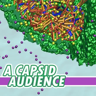 A Capsid Audience: The Weekly Virology Podcast
