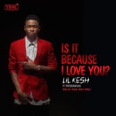 Lil Kesh - Is It Because I Love You (feat. Patoranking) artwork