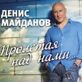 Пролетая над нами - Денис Майданов