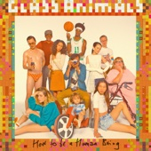 Glass Animals - Take a Slice artwork