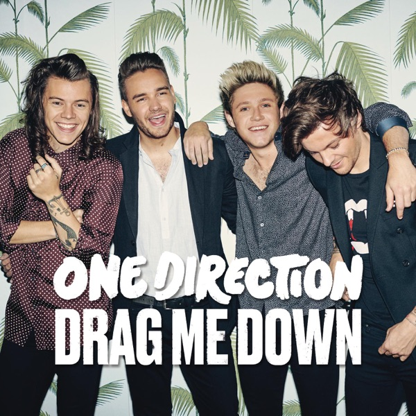Cover art for Drag Me Down