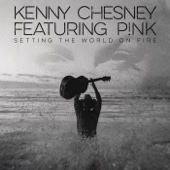 Setting the World on Fire with P nk Kenny Chesney