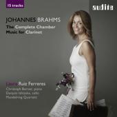 Sonata in  F Minor, Op. 120 No. 1 for Clarinet and Piano: I. Allegro appassionato - Sostenuto ed espressivo