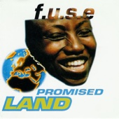 Promised Land (Disco Mix)