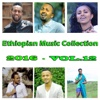 Ethiopian Music Collection 2016, Vol. 12 - Various Artists, Various Artists