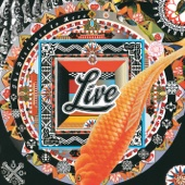 LIVE - The Distance to Here artwork