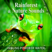 Calming Water Consort - Rainforest & Nature Sounds: 50 Healing Power of Water (Rain, River, Ocean and Sea) Music for Sleep and Relaxation, Free Your Mind & Relax Better, Deep Waves Meditation artwork