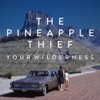 Your Wilderness, The Pineapple Thief