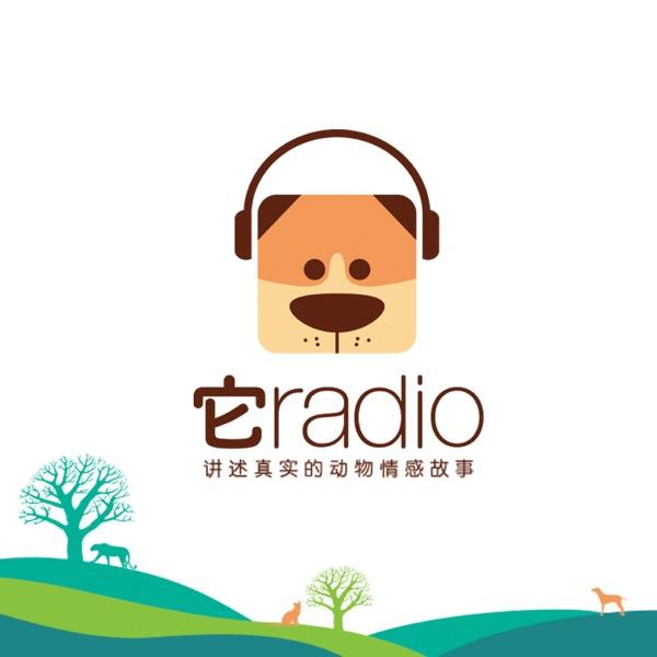 它radio