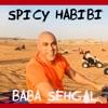 Spicy Habibi