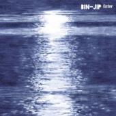 BIN-JIP - Hair Down artwork