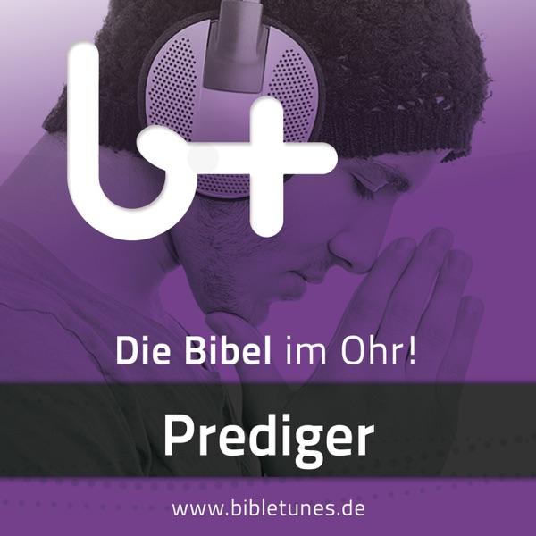 bibletunes.de » Prediger