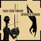 Capoeira de Besouro