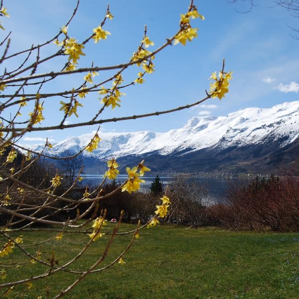 NRK – Naturens verden