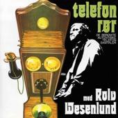 Telefonrør