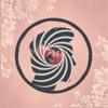 Cherry Blossom - EP