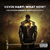 "Push It On Me - Kevin ""Chocolate Droppa"" Hart & Trey Songz Cover Art"