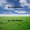 Greensleeves - Single