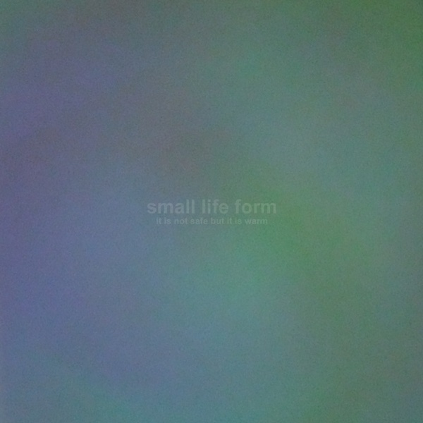 Small Life Form - It Is Not Safe But It Is Warm - EP