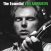 The Essential Van Morrison, Van Morrison